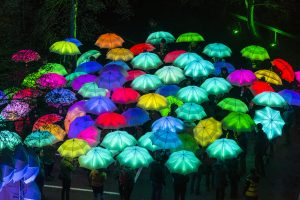 LED Umbrellas from Cirque Bijou